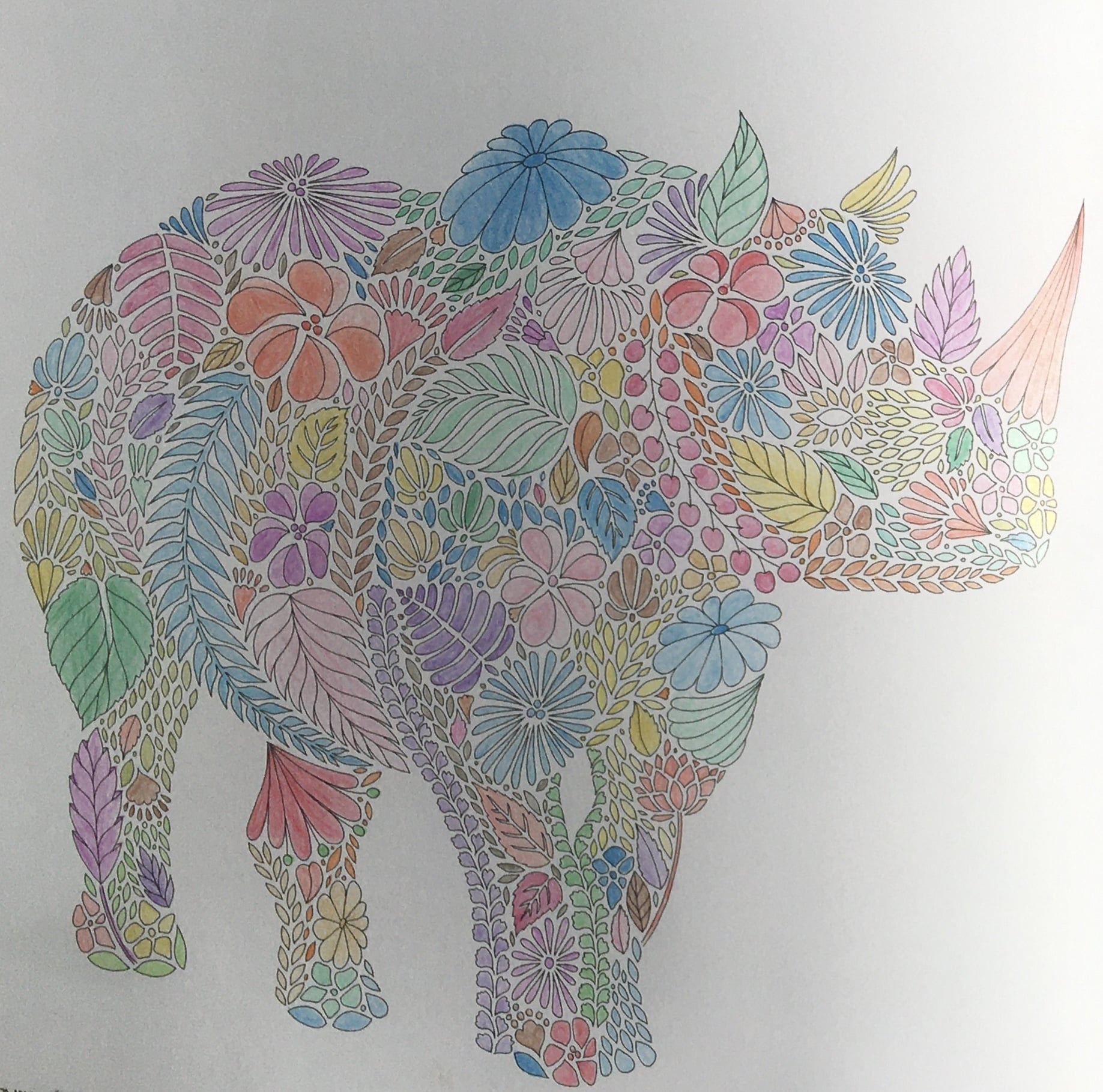 A rhino made up of flowers coloured with coloured pencils