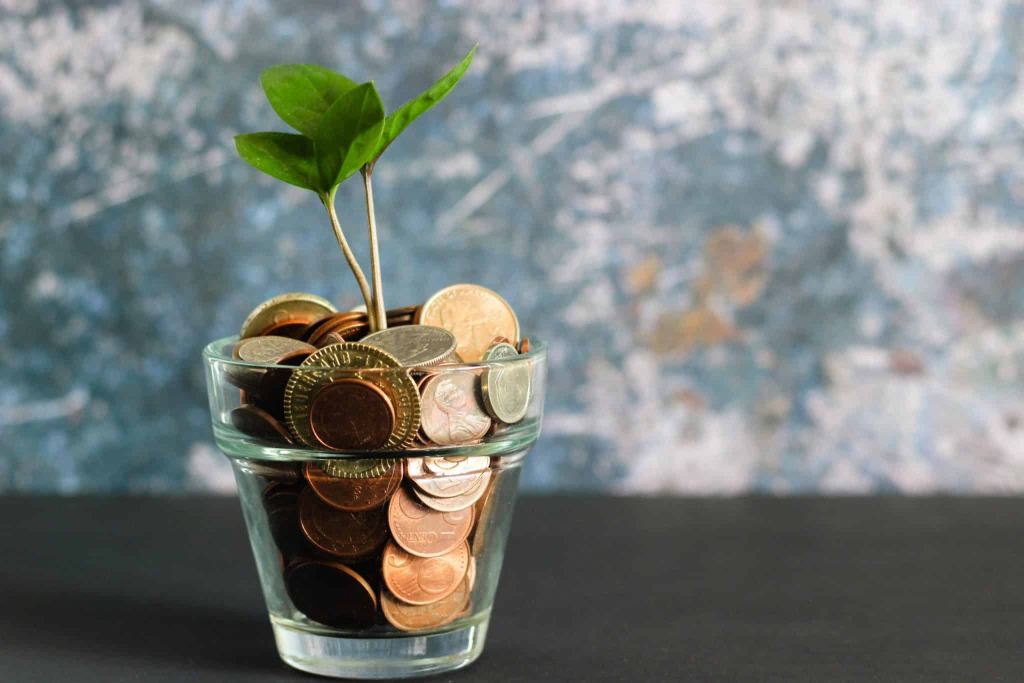 A glass filled with coins with a small plant growing out if it